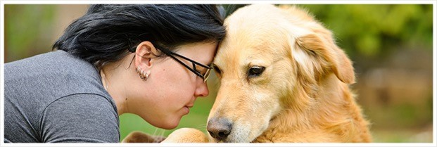 Pet Surrender