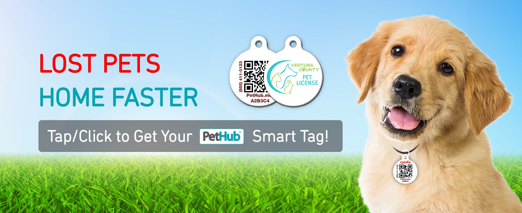 Lost Pets Home Faster With PetHub Tap or Click to Get Your PetHub Smart Tag