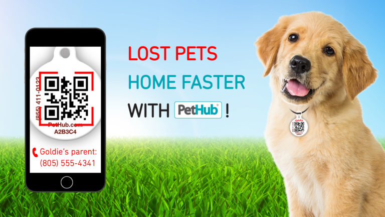 Lost Pets Home Faster With PetHub