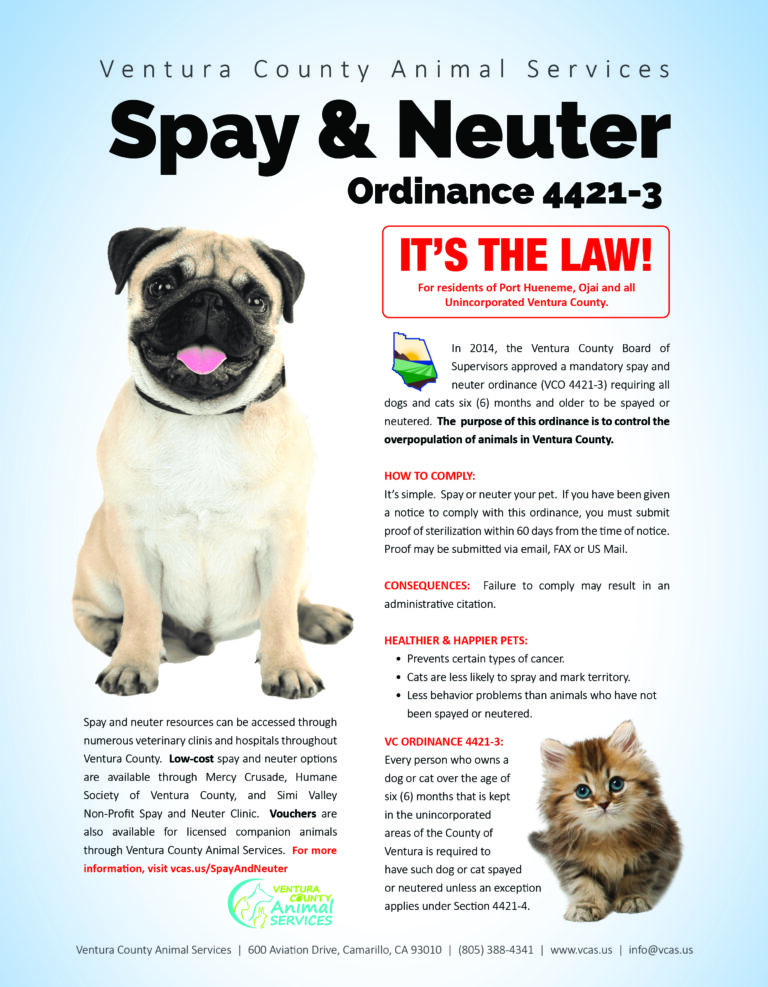 Spay & Neuter Flyer ENGLISH