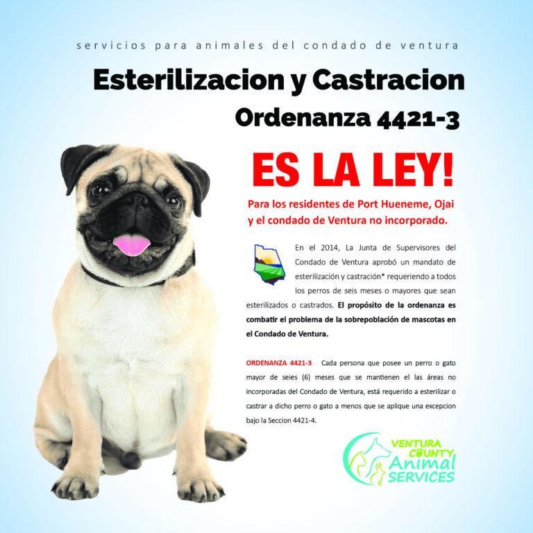 Esterilizacion y Castracion
