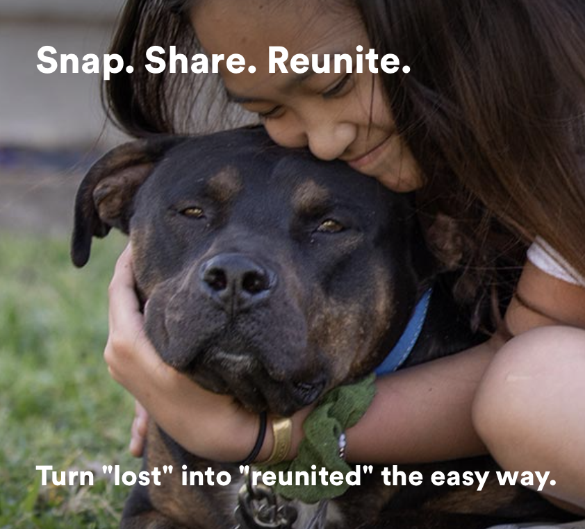 Snap. Share. Reunite. Turn lost into reunited the easy way